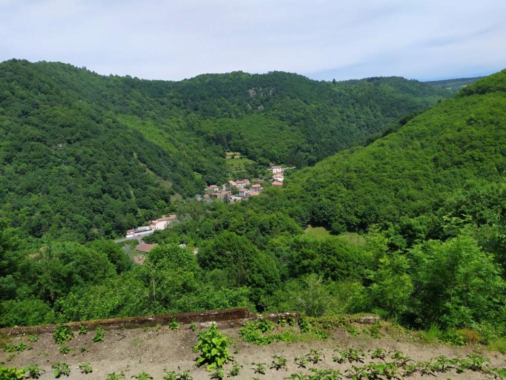 Occitanie - Sortie : Passerelle de Mazamet et ville de Hautpoul le jeudi 21  Img_2022