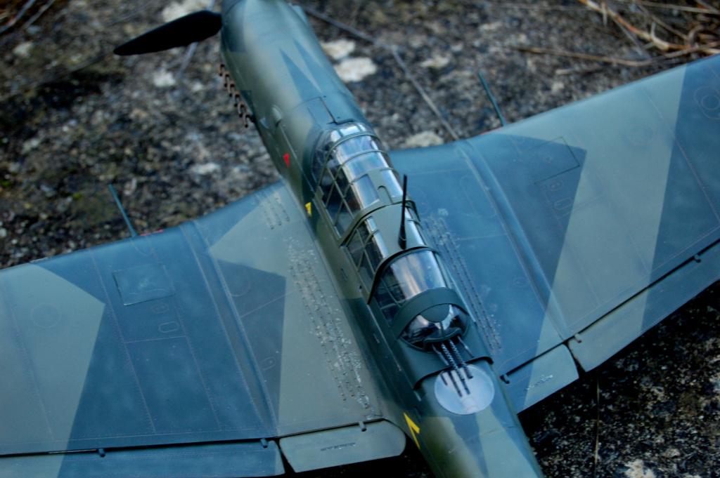 Junkers JU-87D-5 Trumpeter 1/24 - Page 7 Dsc_0617
