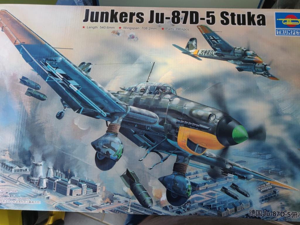Junkers JU-87D-5 Trumpeter 1/24 Img_2039