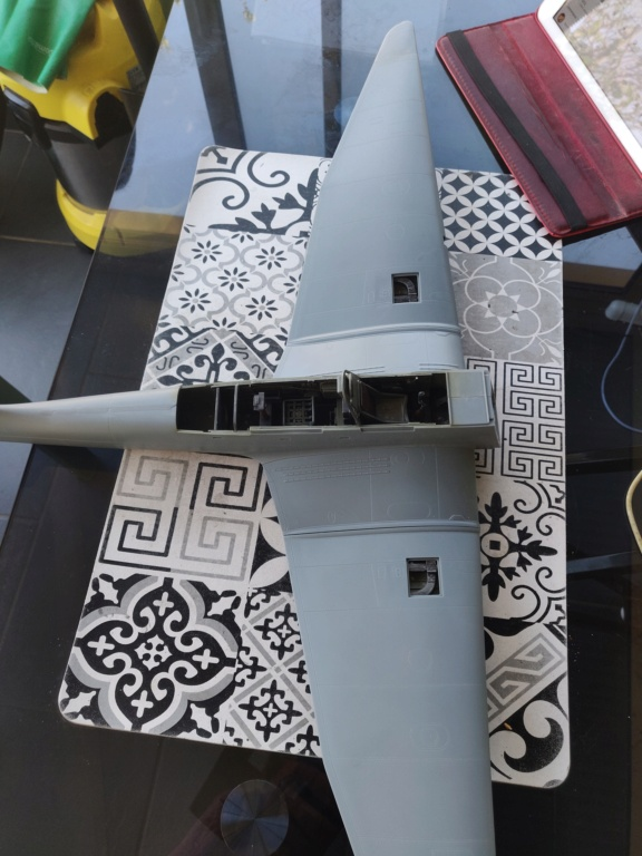 Junkers JU-87D-5 Trumpeter 1/24 - Page 2 Img_2059
