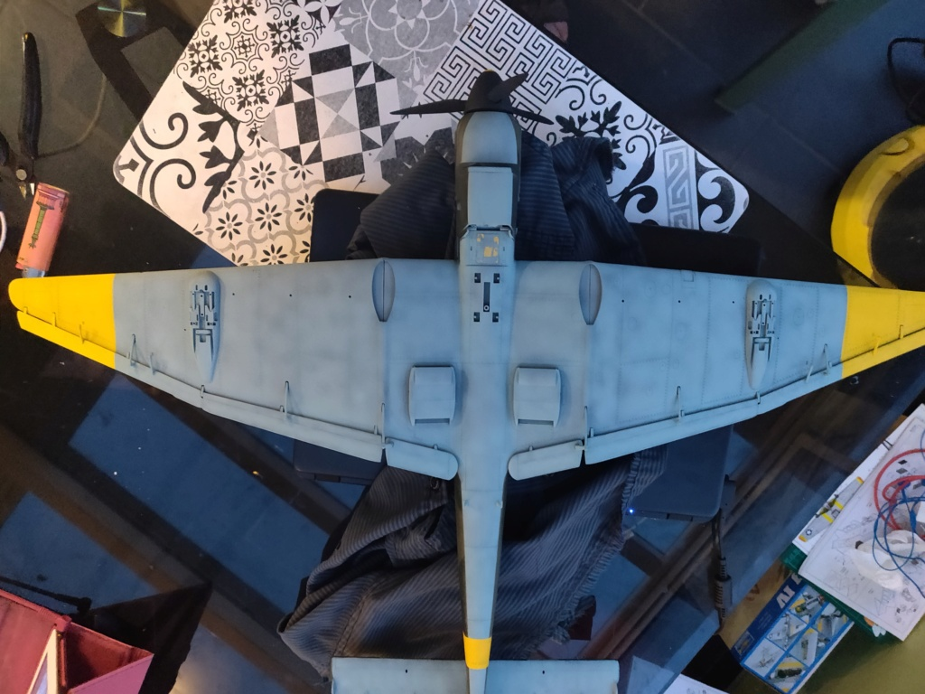 Junkers JU-87D-5 Trumpeter 1/24 - Page 5 Img_2089