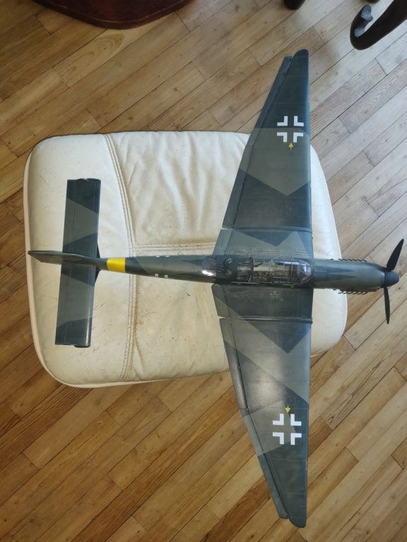 Junkers JU-87D-5 Trumpeter 1/24 - Page 6 Img_2104