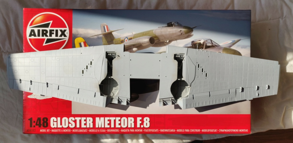 HELLCAT AIRFIX 1/24 - Page 4 Img_2125
