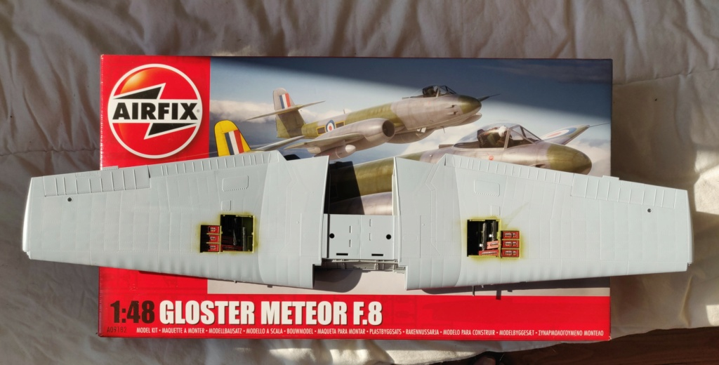 HELLCAT AIRFIX 1/24 - Page 4 Img_2126