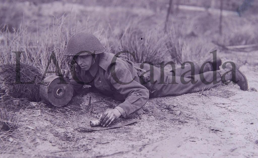 Canadian M1 Two-Tone Netting [QUESTION] Dscn1510