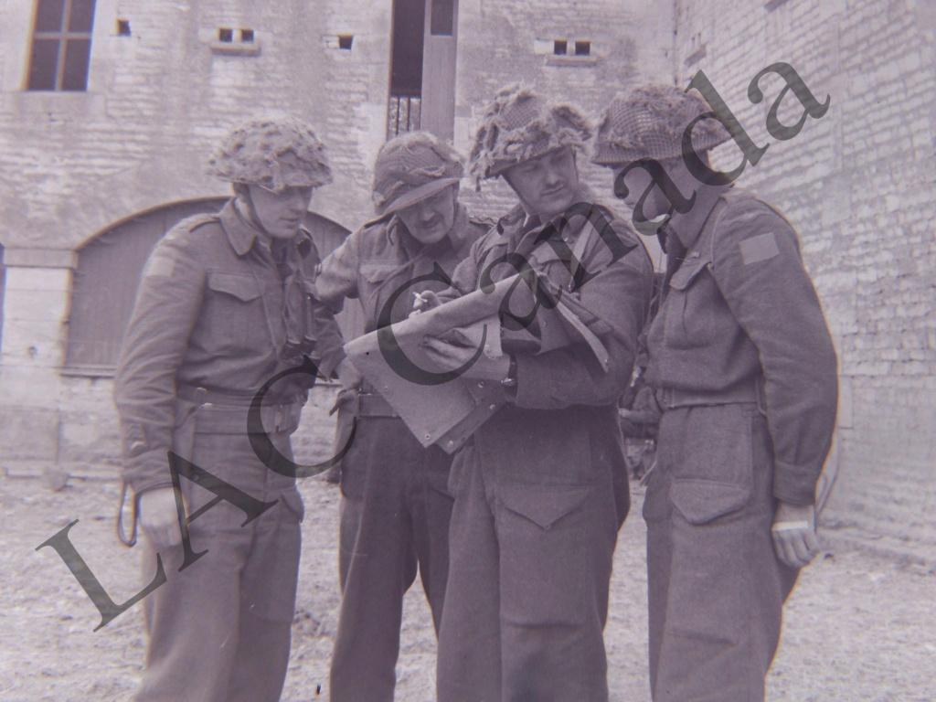Canadian M1 Two-Tone Netting [QUESTION] Dscn1810