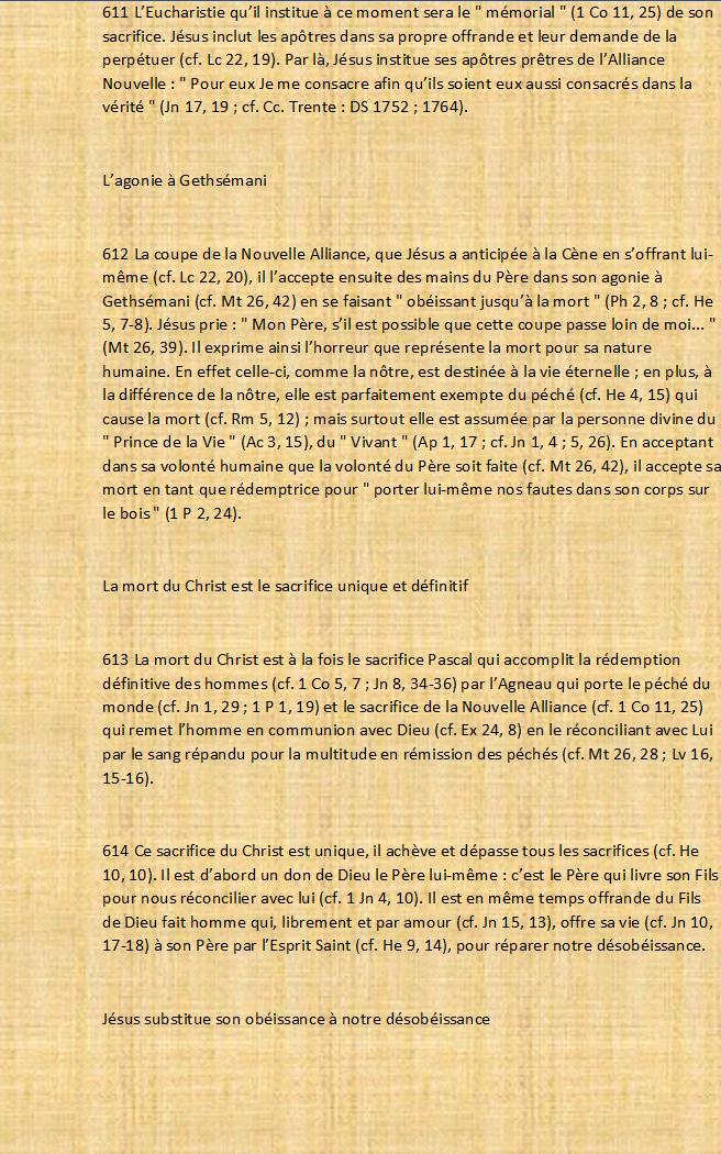 Messages d'une Juive messianique  - Page 19 Catzoc17