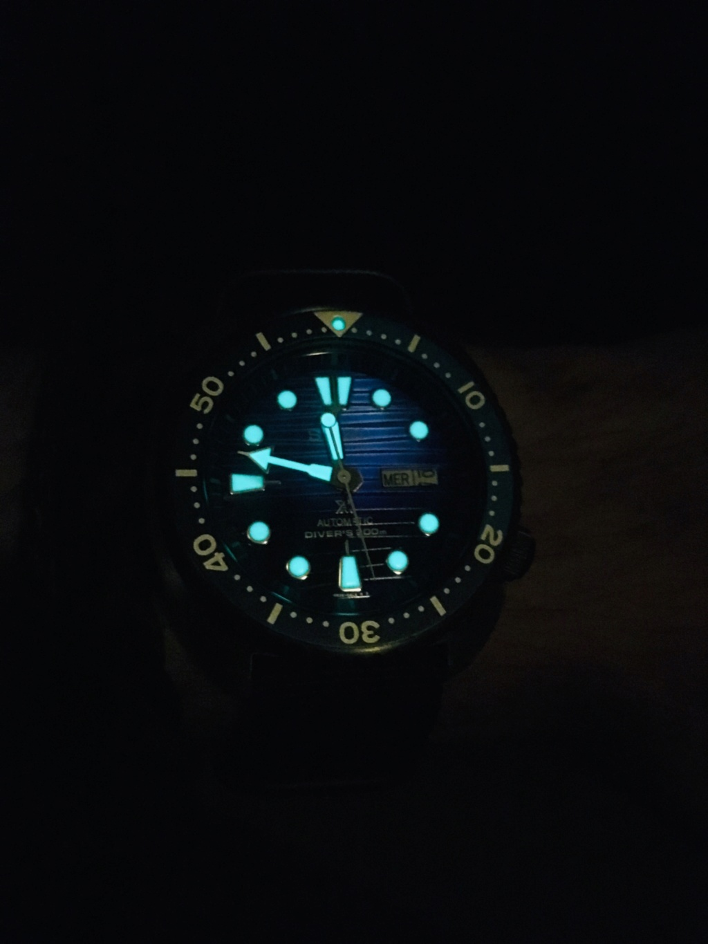 [Vends] Seiko Turtle Save the oceans SRPC91 13477210