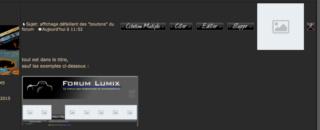"""affichage défaillant des """"boutons"""" du forum Captu121"""