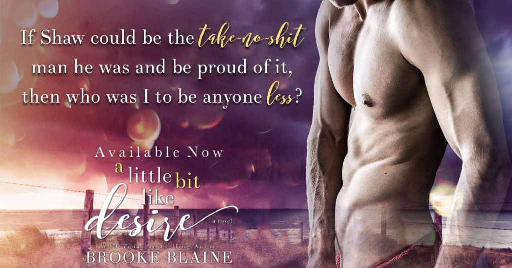 BLAINE Brooke - SOUTH HAVEN - Tome 2 : A Little Bit Like Desire Thumbn11