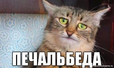 ЮМОР и не ТОЛЬКО - Страница 6 13780210