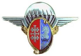 Deux militaires français tués en opération au Mali Insign11