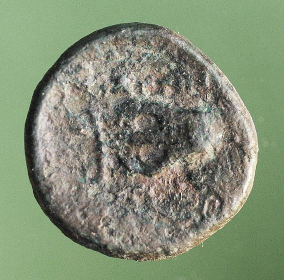 La cithare d'Apollon Cithar15