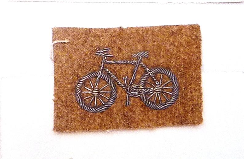 Brevet de vélocipèdiste 1901 Velos_11
