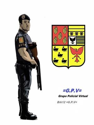 RÁDIO POLICIAL (COMUNICAÇÃO POR VOZ) TRAB. EM CONJUNTO Sd_rot22
