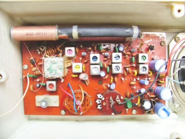 Elettroniche di amplificazione e schede integrate Irradi10