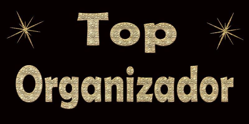 TOP ORGANIZADOR JANEIRO 1010