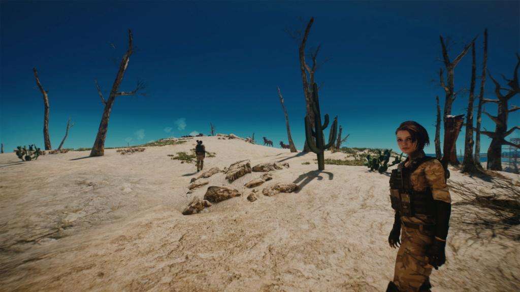 Fallout Screenshots XIV - Page 27 20210522