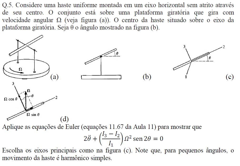 Equação de Euler Sem_tz10