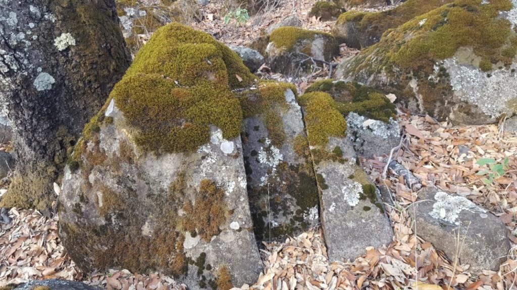 roca extraña en el cerro 410