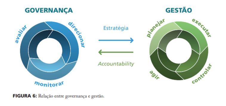 Limites da Governança Corporativa Captur10