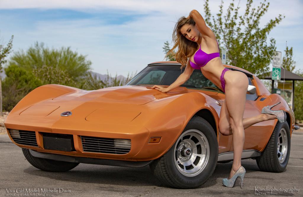 Corvette C3 1973 - Page 2 1973_c17