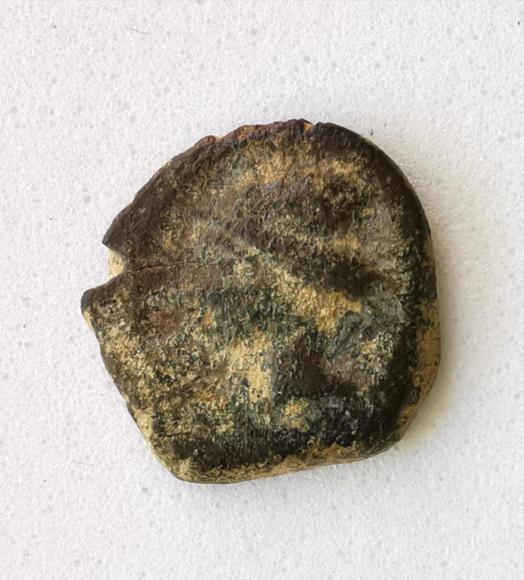 1/5 Calco hispano-cartaginés Ceca incierta 221-218 AC Img_2241