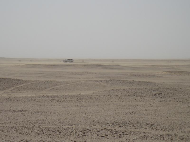 Expédition à Oman, avril-mai 2013 Dsc00810