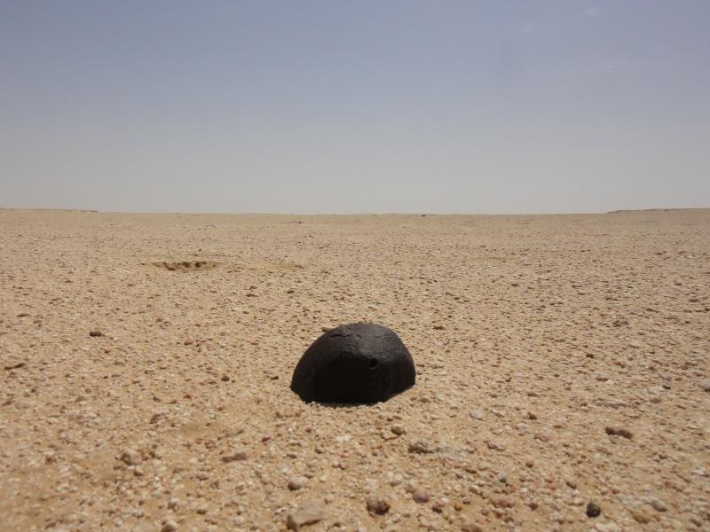 Expédition à Oman, avril-mai 2013 Dsc00811