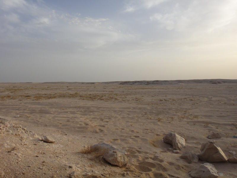 Expédition à Oman, avril-mai 2013 Dsc00812
