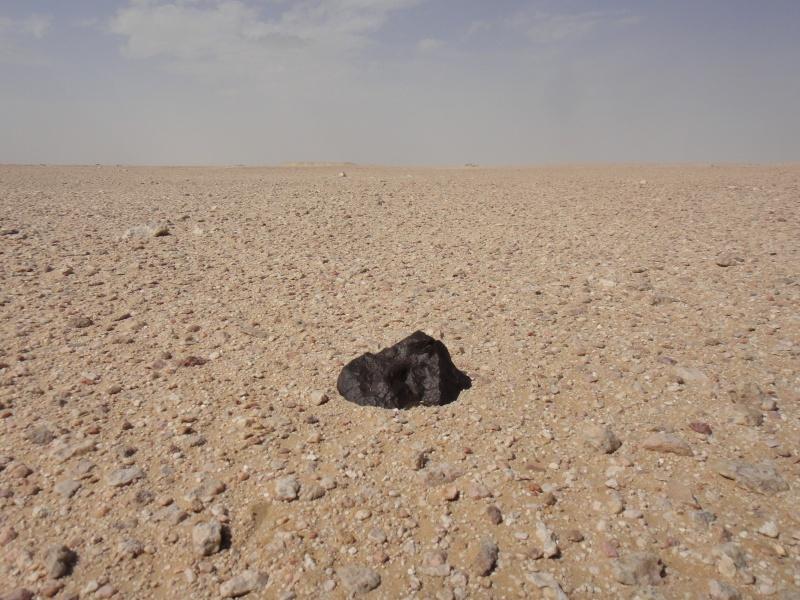 Expédition à Oman, avril-mai 2013 Pm030c10