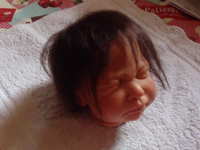 Les bébés de Cayenne - Page 2 Rootin25