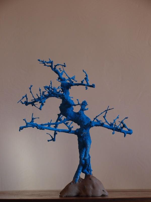 2ème vie pour un bonsaï P1011311