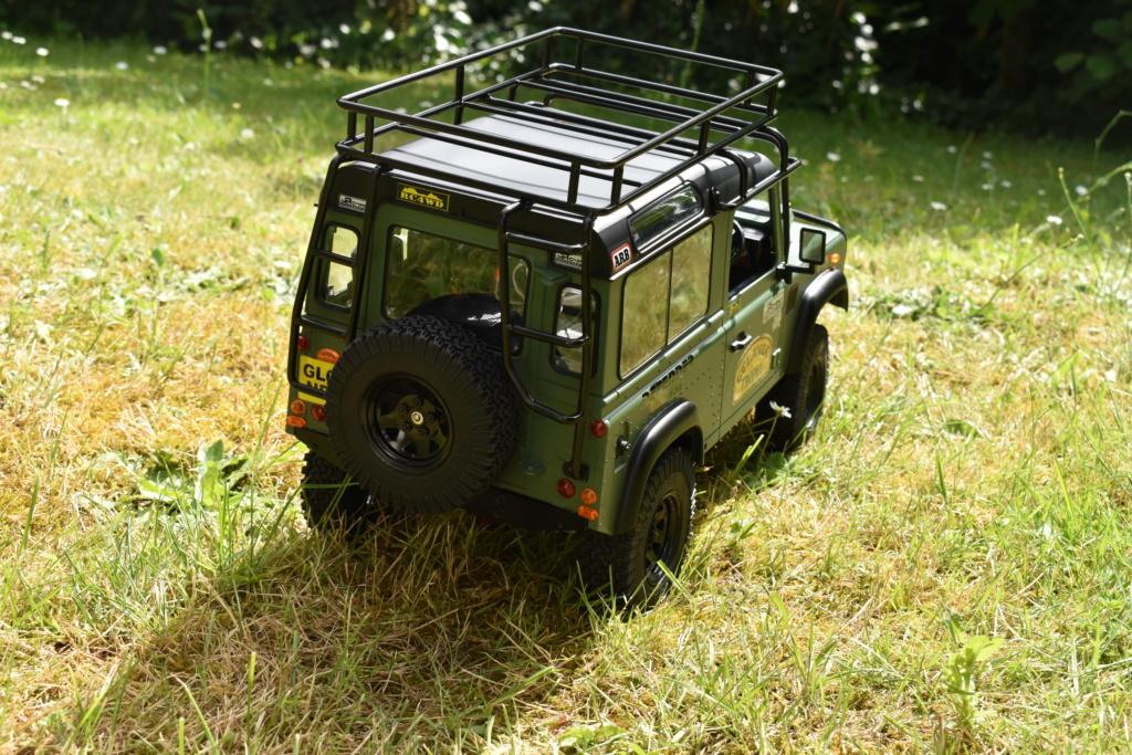 Mon Gelande2 D90 de RC4WD Dsc_0619