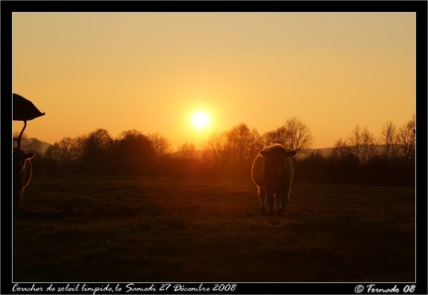 Lever/Coucher de soleil Dsc00324