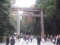 Shichi-Go-San Img_2212