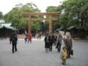 Shichi-Go-San Img_2214