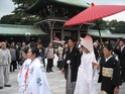 Shichi-Go-San Img_2314