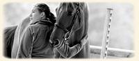 Présentations de vos chevaux