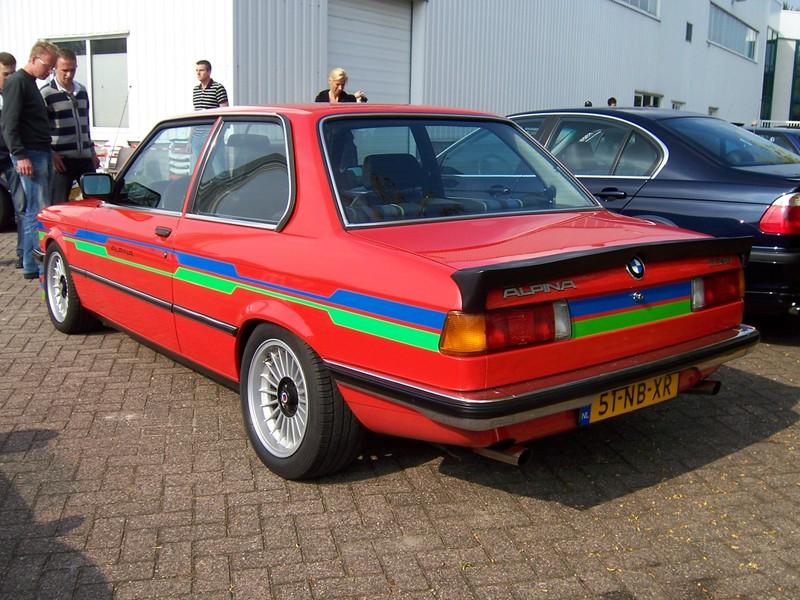 Rasso Hollandais 00282210