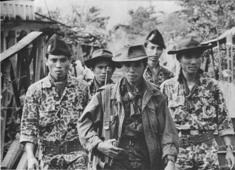 South Vietnam camouflage Sud_vi12