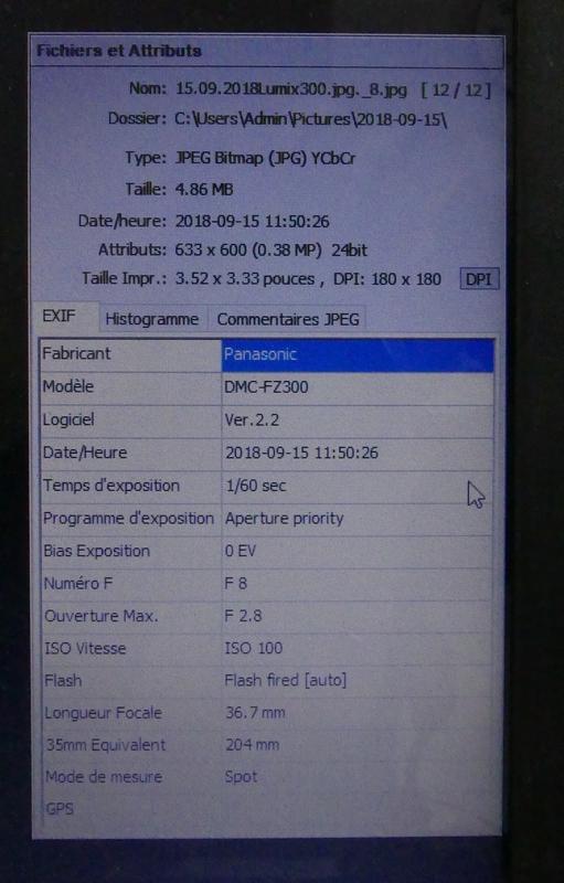 Augmenter ma profondeur de champs en macro ! 15_09_13