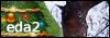 Equestra Dream Academy Link210