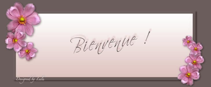 Sœurs de Montpellier
