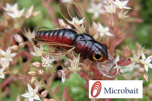 les Microbait Microb10