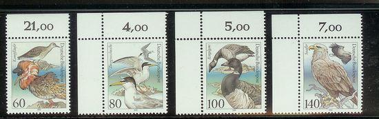 Vögel Brdvoe10