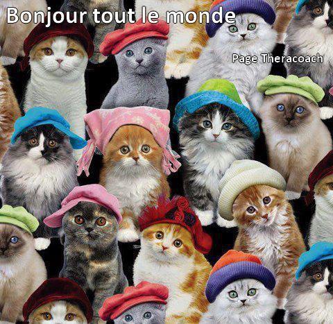 DITES BONJOUR !! Bonjou10