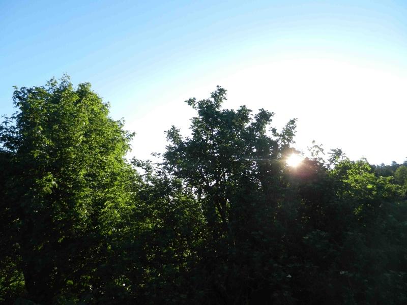 C'est l'été !!!!!!!!!!! 2013-211