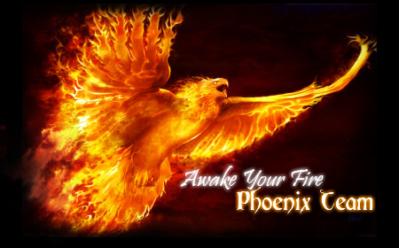 Phoenix Team Awake_11
