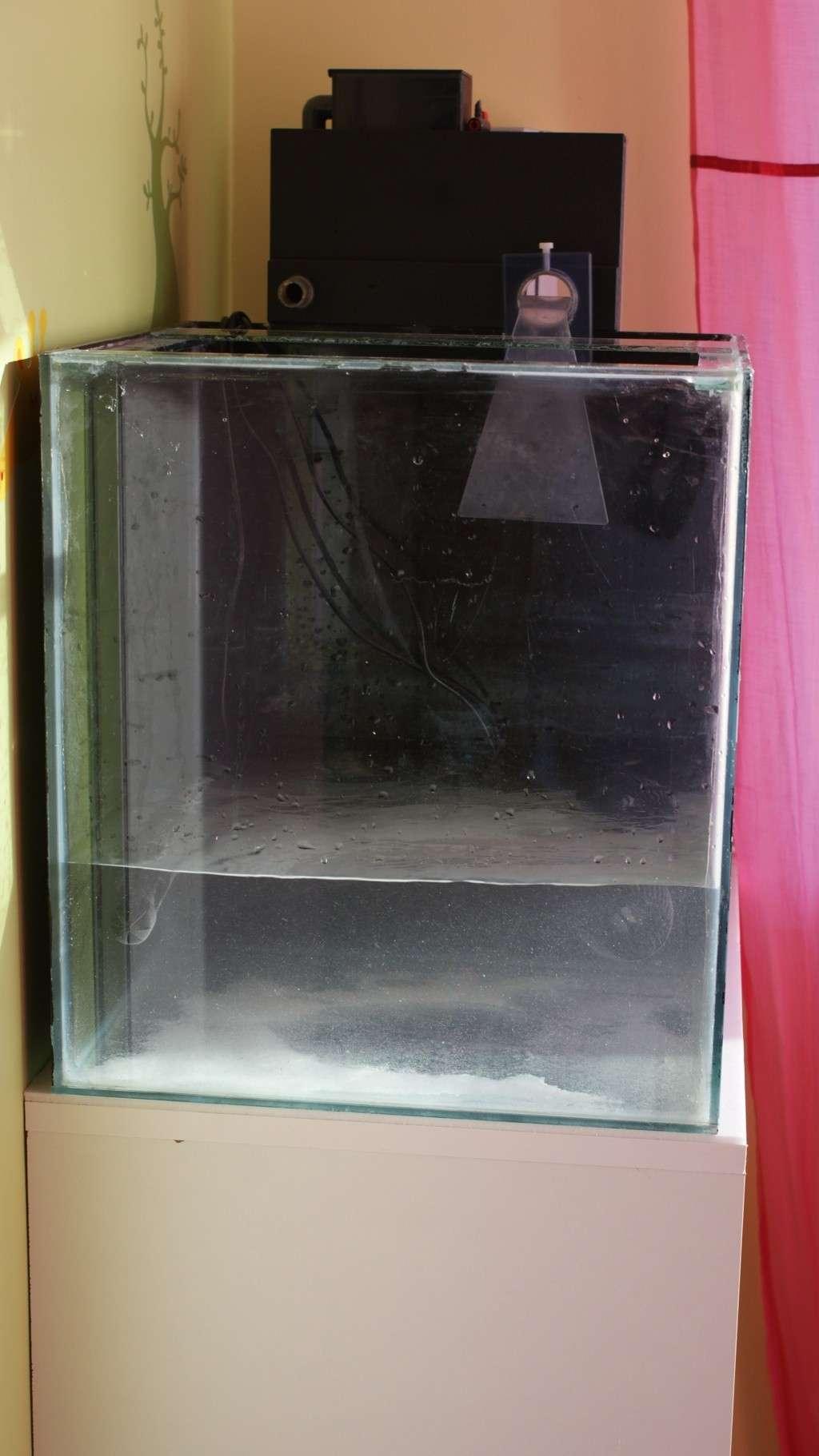 Bac eau de mer  Dsc01910